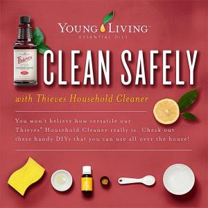 Thieves - Clean Safely
