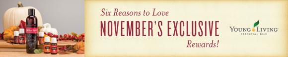 November 2015 promo banner