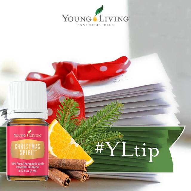 YL Tip Christmas Spirit