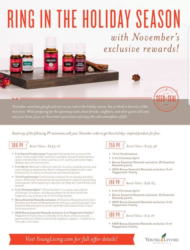 november-ring-in-the-holidays-er-promo-2016
