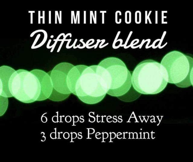 thin-mint-cookie-diffuser-recipe